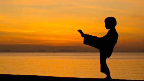 7-year-old's karate chops could defeat the mightiest warriors