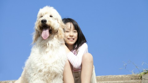 Weird Things All Dog Owners Do